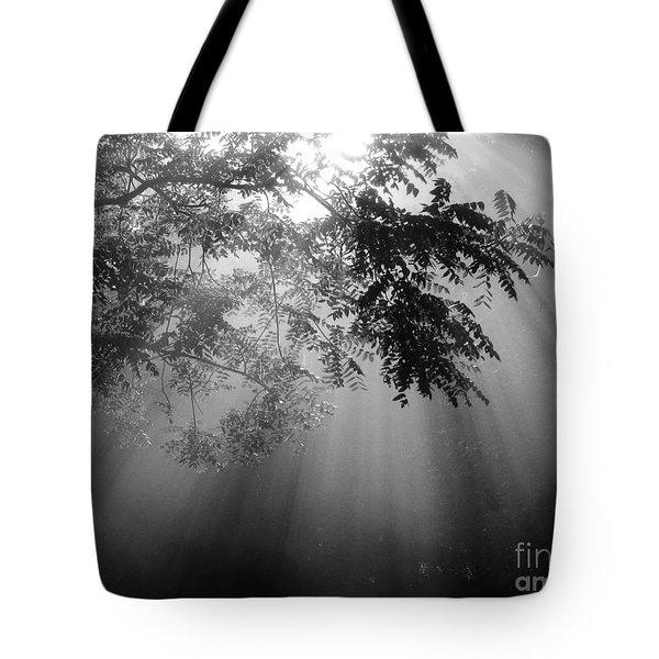 God Rays Tote Bag