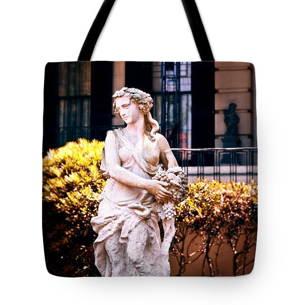 Goddess Of The South Tote Bag by Renee Sullivan