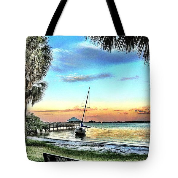 God's Country IIi Tote Bag by Carlos Avila