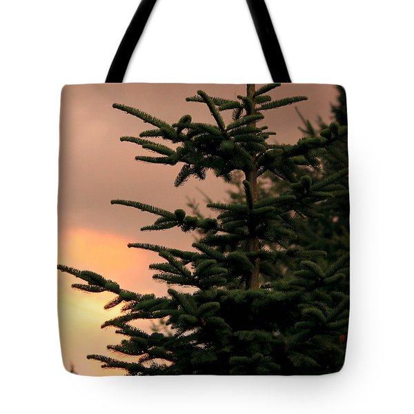 God's Gift Tote Bag by Jeanette C Landstrom
