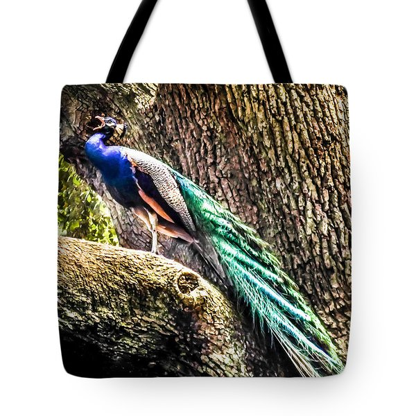 Gods Heavenly Creatures Tote Bag