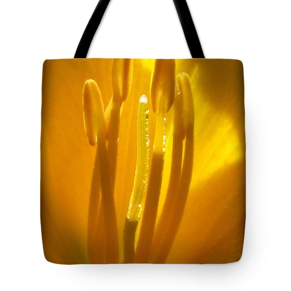 God's Light Shining Through Tote Bag