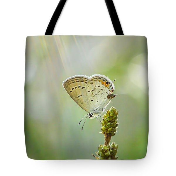 God's Love Shining Down Tote Bag by Debbie Green