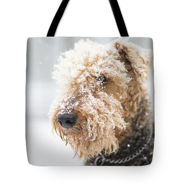 Dog's Portrait Under The Snow Tote Bag