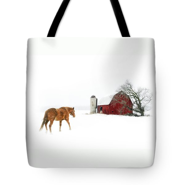 Tote Bag featuring the photograph Going Home by Ann Lauwers