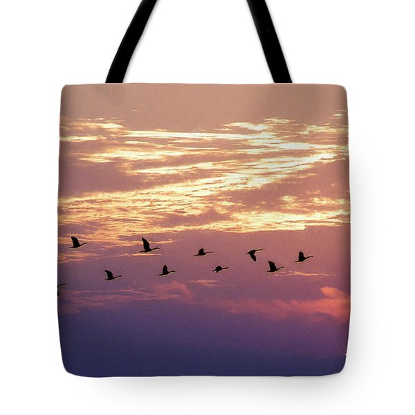 Going North Tote Bag