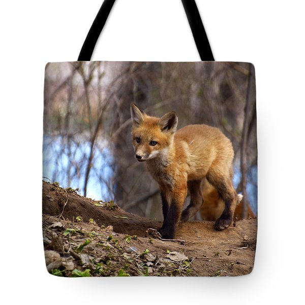 Going To The Den  Tote Bag by Thomas Young