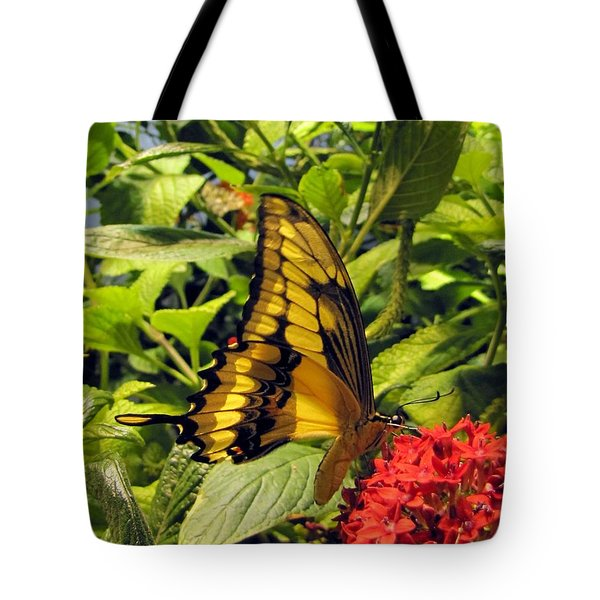 Gold Giant Swallowtail Tote Bag