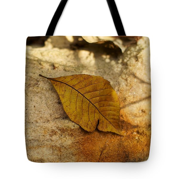 Tote Bag featuring the photograph Gold Leaf by Jane Eleanor Nicholas