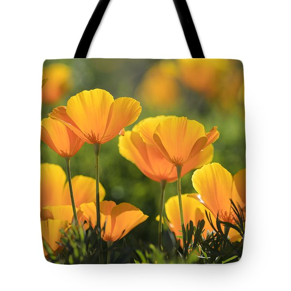 Gold Poppies Tote Bag