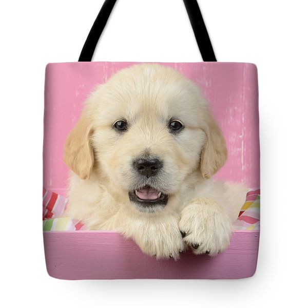 Gold Retriever Pink Background Tote Bag by Greg Cuddiford