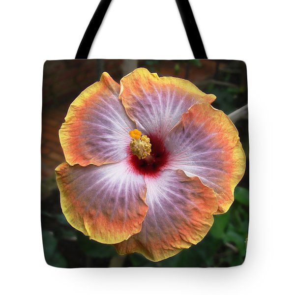 Tote Bag featuring the photograph Gold Rim Hibiscus by Susan Wiedmann