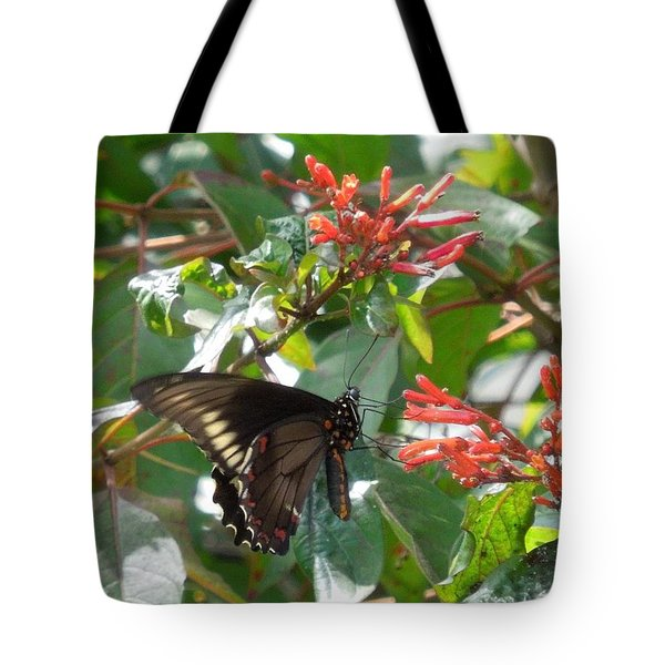 Tote Bag featuring the photograph Gold Rim Swallowtail by Ron Davidson