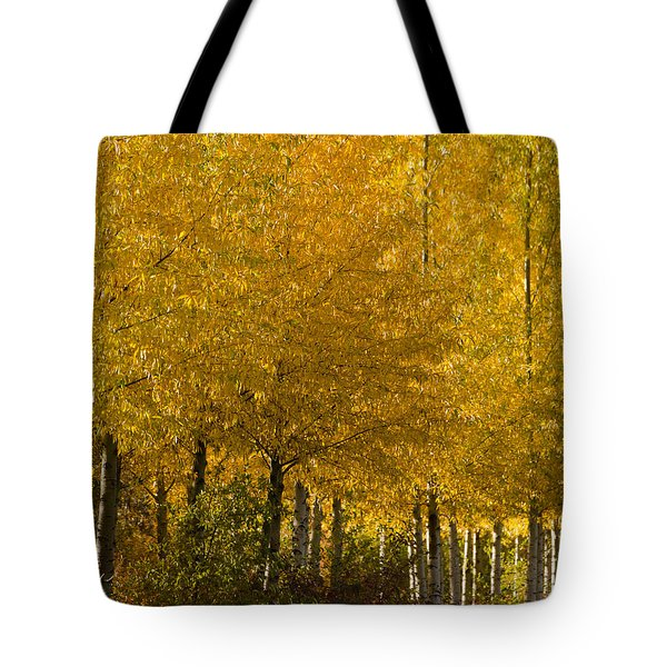 Tote Bag featuring the photograph Golden Aspens by Don Schwartz