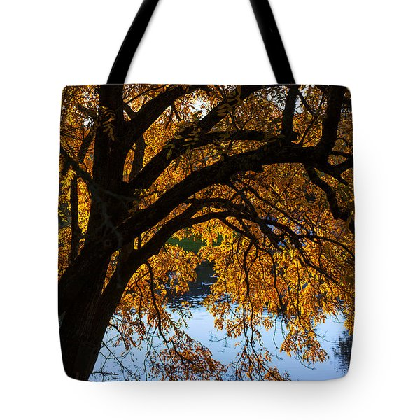 Golden Autumn Leaves Tote Bag by Garry Gay