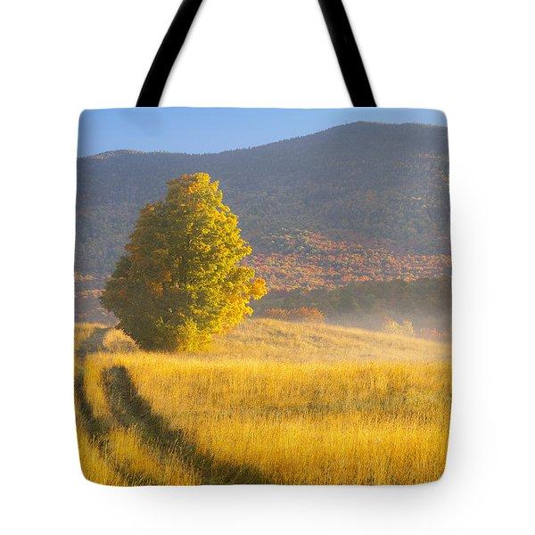 Golden Autumn Morning Tote Bag
