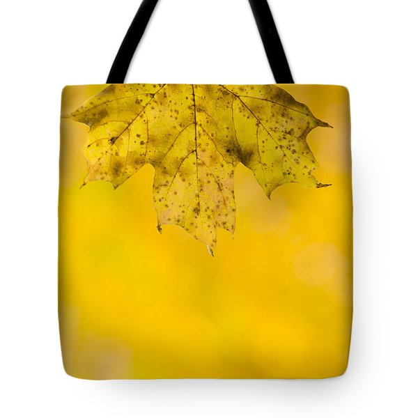 Tote Bag featuring the photograph Golden Autumn by Sebastian Musial
