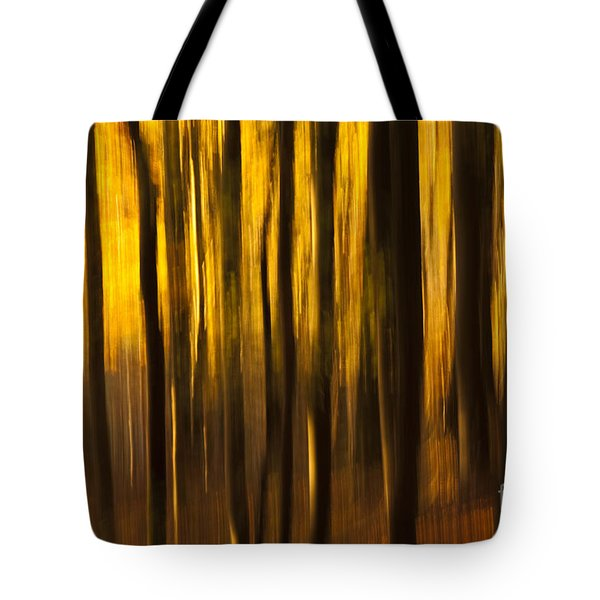 Golden Blur Tote Bag by Anne Gilbert