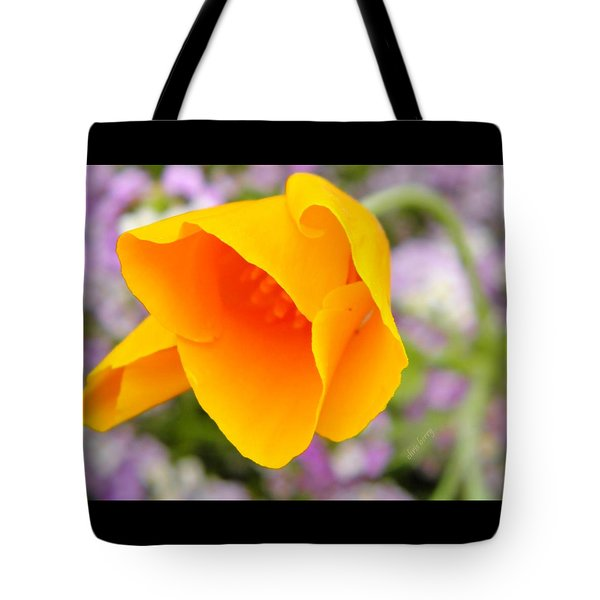 Golden California Poppy Tote Bag by Chris Berry