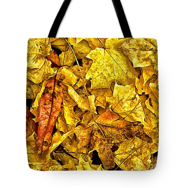 Golden Colors Of Fall Tote Bag