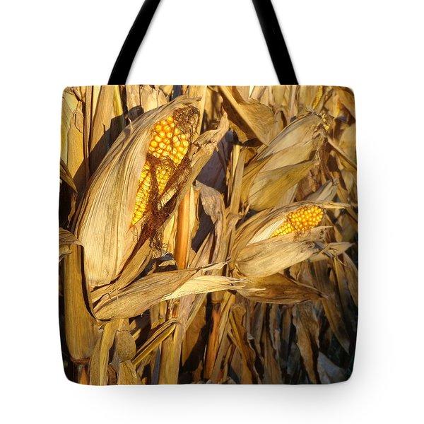 Tote Bag featuring the photograph Golden Corn by Joseph Skompski
