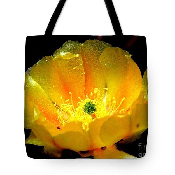 Golden Desert Flower Tote Bag