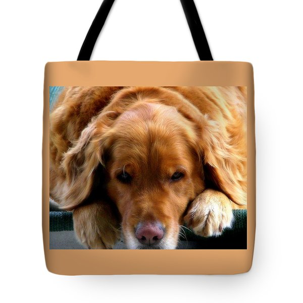 Golden Dreams Tote Bag by Karen Wiles