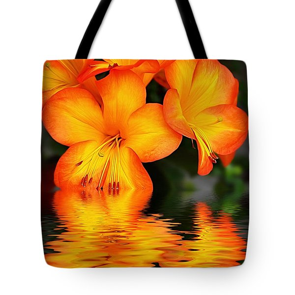 Golden Dreams Tote Bag by Kaye Menner