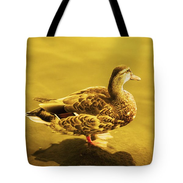 Golden Duck Tote Bag by Nicola Nobile
