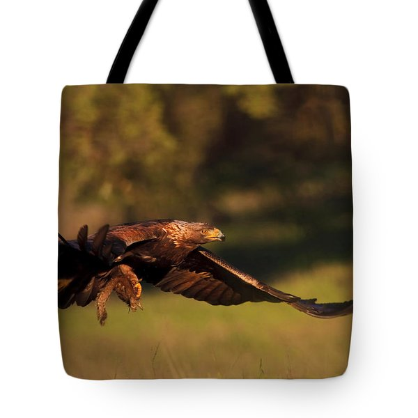 Golden Eagle On The Hunt Tote Bag
