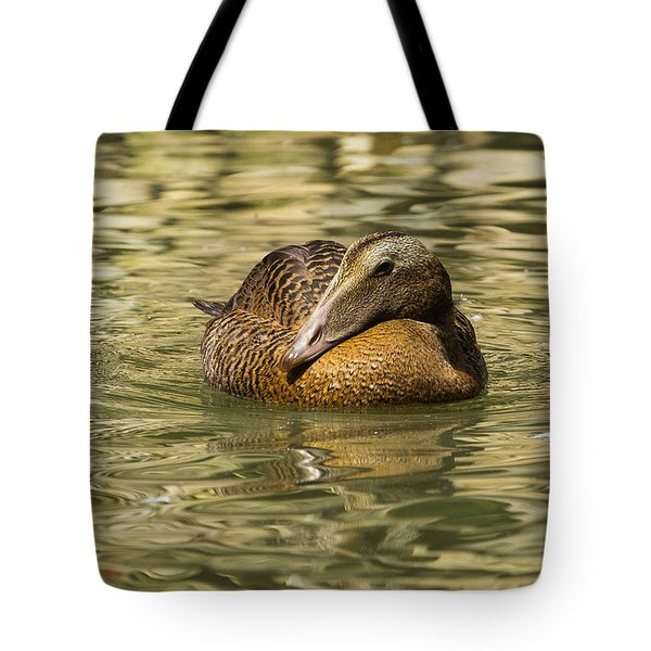 Golden Eider Tote Bag