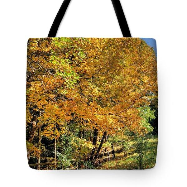 Golden Fenceline Tote Bag