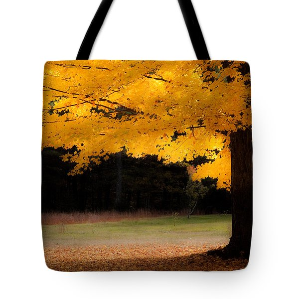 Golden Glow Of Autumn Fall Colors Tote Bag by Jeff Folger