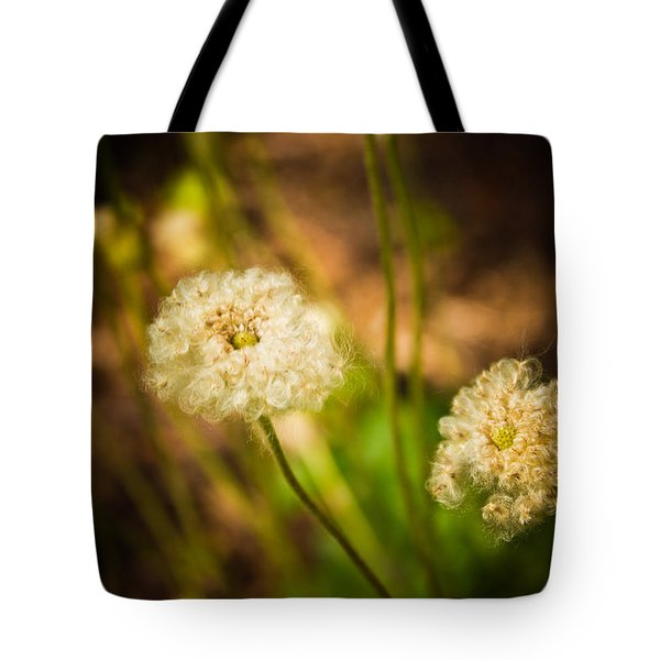 Golden Hour Tote Bag by Sara Frank