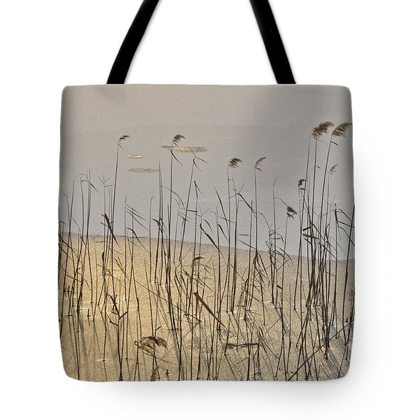 Golden Ice Tote Bag by Simona Ghidini