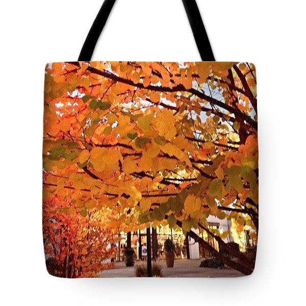 Remembering Autumn Tote Bag