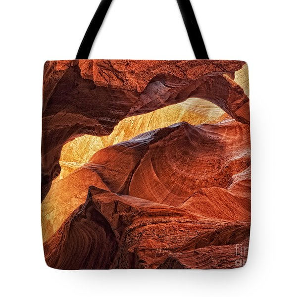 Golden Light Tote Bag by Claudia Kuhn