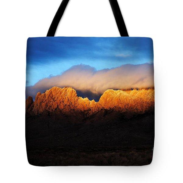 Golden Light Tote Bag by Vivian Christopher