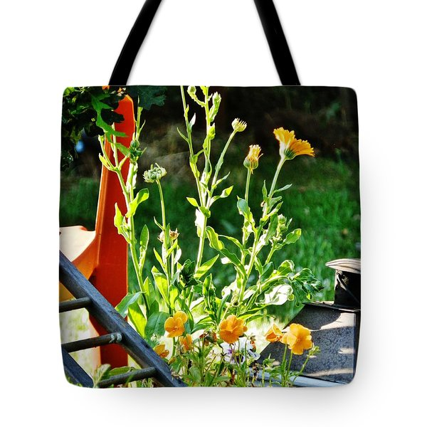 Tote Bag featuring the photograph Golden Moment by VLee Watson