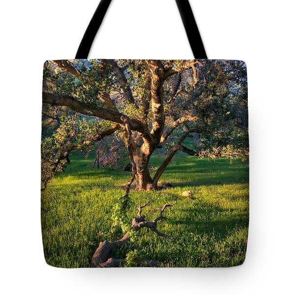 Golden Oak Tote Bag
