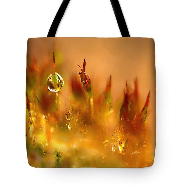 Golden Palette Tote Bag