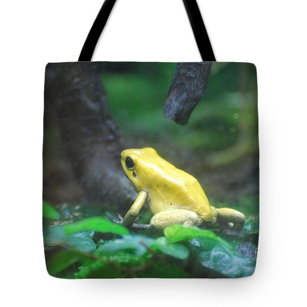 Golden Poison Frog Tote Bag by DejaVu Designs