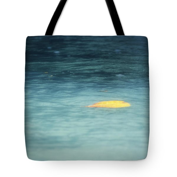 Tote Bag featuring the photograph Golden Reflections by Melanie Lankford Photography