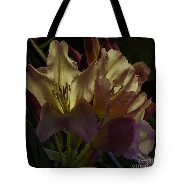 Golden Reserve Tote Bag by Jean OKeeffe Macro Abundance Art