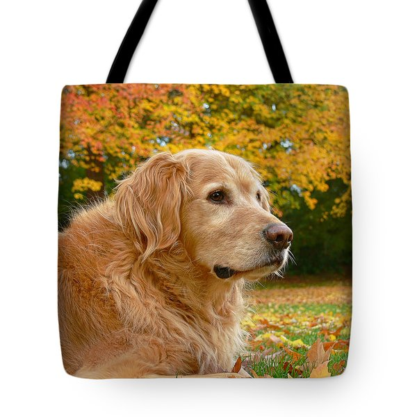 Golden Retriever Dog Autumn Leaves Tote Bag by Jennie Marie Schell