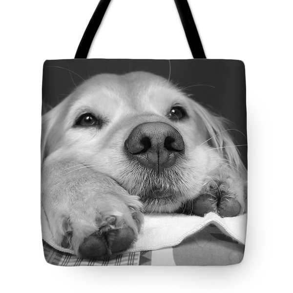 Golden Retriever Dog I See You Tote Bag