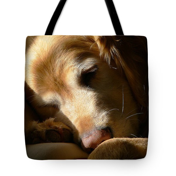 Golden Retriever Dog Sleeping In The Morning Light  Tote Bag