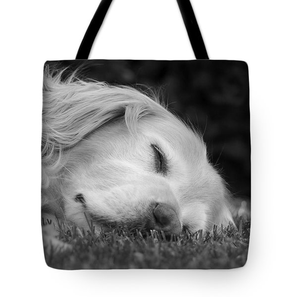 Golden Retriever Dog Sweet Dreams Black And White Tote Bag by Jennie Marie Schell