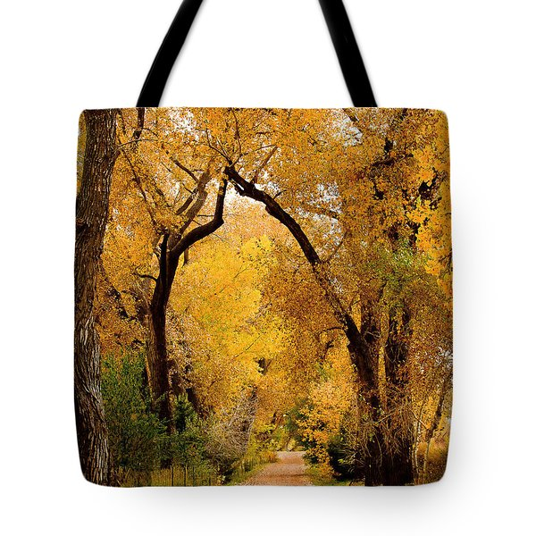 Golden Roads Tote Bag by Steven Reed