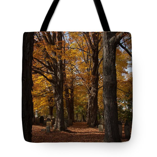 Tote Bag featuring the photograph Golden Rows Of Maples Guide The Way by Jeff Folger